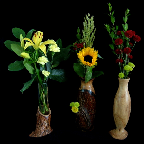 Lindy's Branch Vases